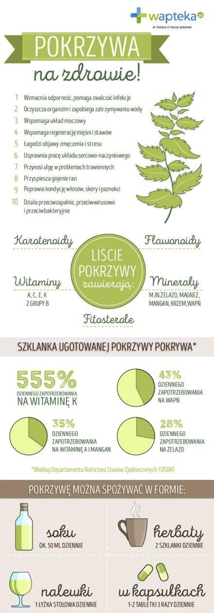 Infografika o pokrzywie