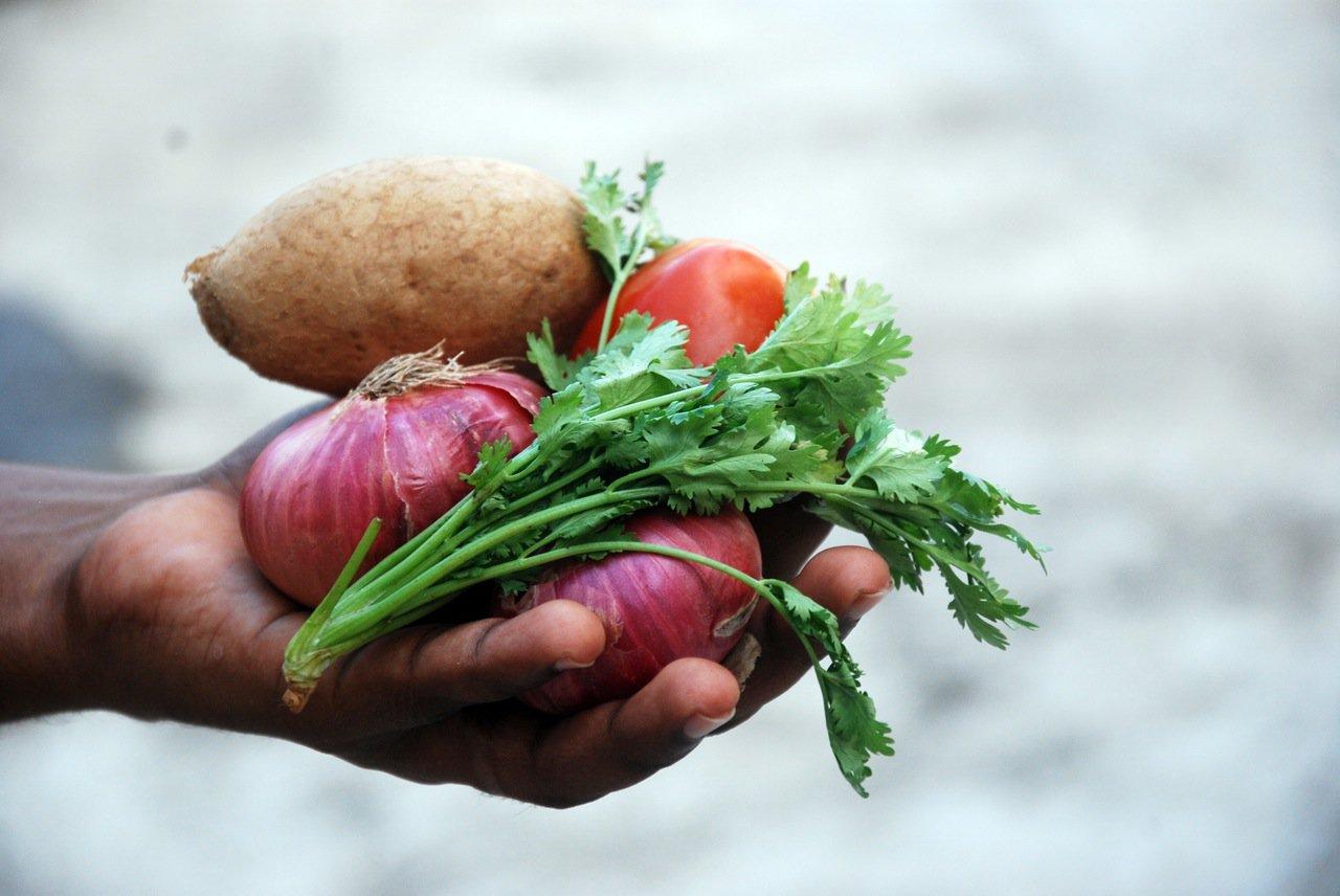 Naturalne antybiotyki to m.in. cebula, czosnek i miód