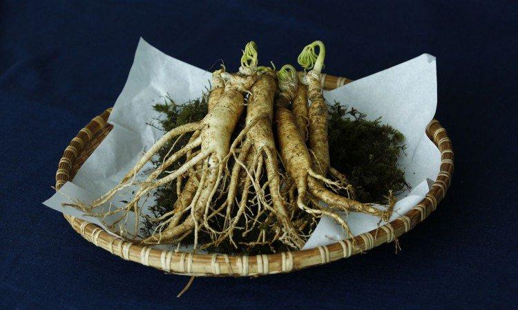 warzywa, które zwiększają penisa)