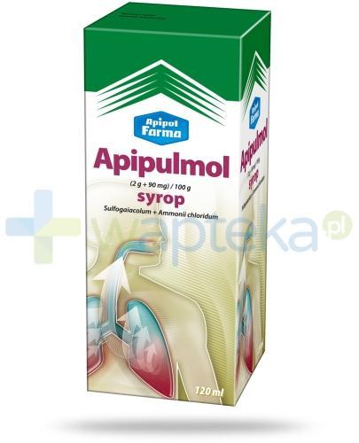 Apipulmol syrop na uporczywy i męczący kaszel 2 x 120 ml - Data ważności 31-01-2017 WYPRZEDAŻ