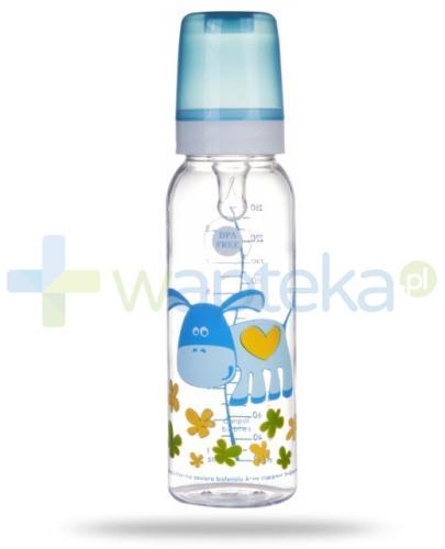 Canpol Babies Butelka niemowlęca 12m+ 250 ml [11/841]