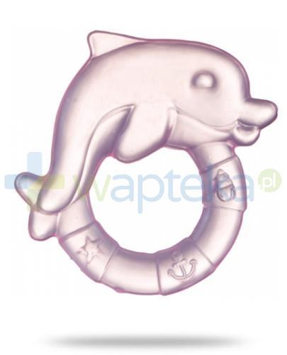 Canpol Babies gryzak wodny delfin 1 sztuka [2/221]