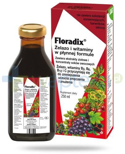 Floradix Odporność tonik bezalkoholowy 250 ml