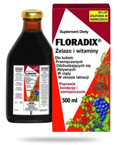 Floradix żelazo i witaminy płyn 500 ml