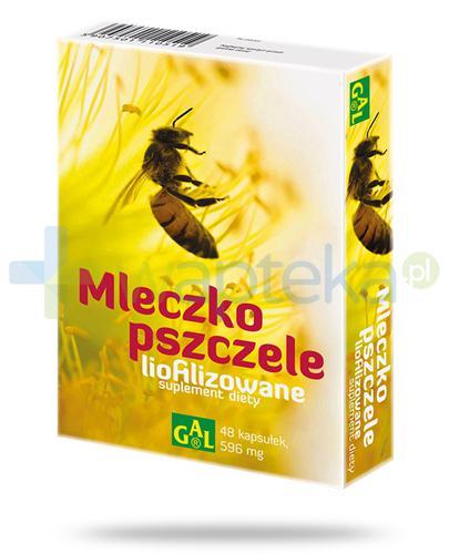 GAL mleczko pszczele lifilizowane 596mg 48 kapsułek