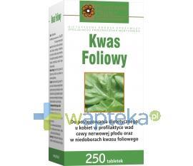 Kwas foliowy 250 tabletek HOLBEX