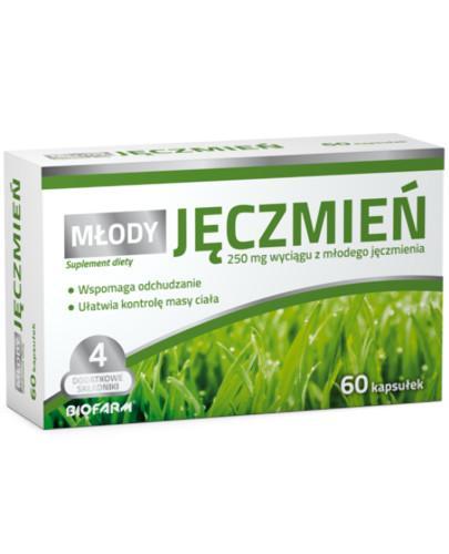 zielony jęczmień tabletki allegro
