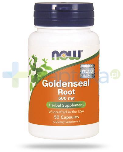 NOW Foods Goldenseal Root gorzknik kanadyjski 50 kapsułek