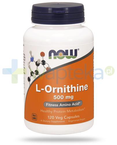 NOW Foods L-Ornithine 500mg 120 kapsułek