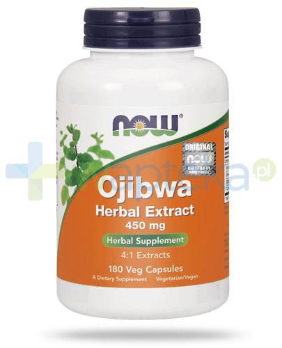 NOW Foods Ojibwa ekstrakt ziołowy 450mg 180 kapsułek