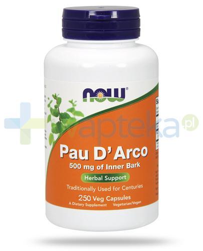 NOW Foods Pau D'Arco 500mg 250 kapsułek vege